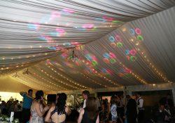 Acerage Wedding (6)