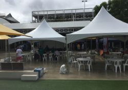 Penrith Festival (6)