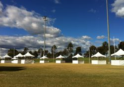 festival set up (27)