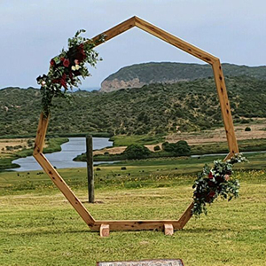 Wooden Hex Arch Hire